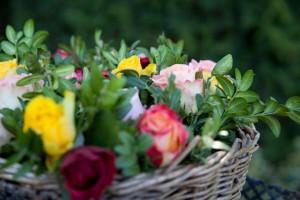 Blumen am Grab moods_2311